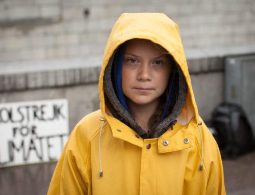 Greta Thunberg diventa velista. Raggiungerà l'America con una barca